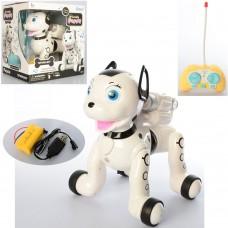 Собака 1034A на радиоуправлении, аккумулятор 30см, звук, свет, ездит, USBзарядн