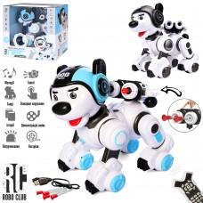 Собака 1901 на радиоуправлении, аккумулятор 25см, сенсорн, муз, зв англ, свет, ездит, танцует, программирование, стреляет пулями, USBзар, 2цв 32-30-22см¶