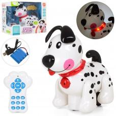 Собака 66001 на радиоуправлении, 20см, аккумулятор муз-звук англ, свет, програмир, USBзарядное