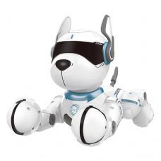 Собака A001 на радиоуправлении