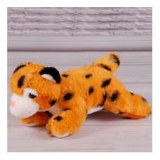 Леопард, 20
