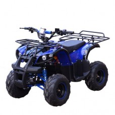 Детский квадроцикл PROFI HB-EATV 800N-4, синий